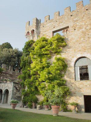the facade if the castle
